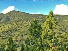 New Mexico Land For Sale